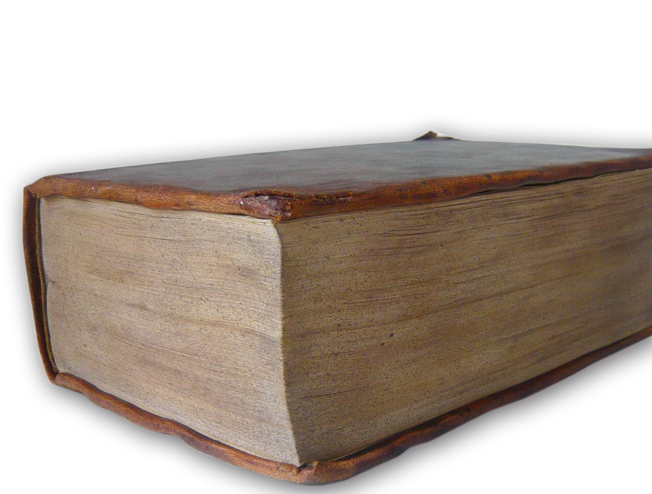 Spezialrequisite // Lutherbibel (1534) / Schnitt